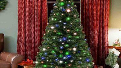 Photo of क्रिसमस ट्री से दूर होता है घर का वास्तु दोष, जानें इससे जुड़ी मान्यता