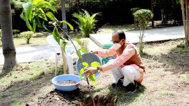 Photo of मुख्यमंत्री चौहान ने आम का पौधा लगाया
