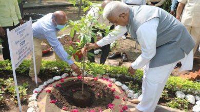 Photo of राज्यपाल मंगुभाई पटेल ने राजभवन में किया पौधरोपण