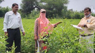 Photo of राजीव गांधी किसान न्याय योजना : धान के साथ अब कृषि व उद्यानिकी की समस्त फसलों को किया गया शामिल
