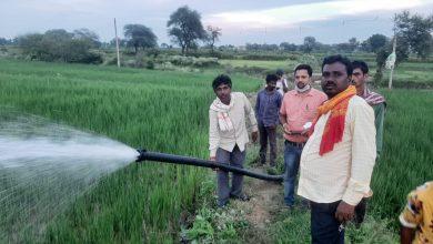 Photo of खंड एवं अल्प वर्षा के हालात में भी गिदला नाला के आसपास लहलहा रही फसल