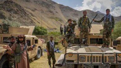 Photo of खूनी खेल में अफगान के 'शेरों' ने 700 तालिबानियों को किया ढेर, 600 लड़ाके कैद, पंजशीर में पंगा लेना पड़ा महंगा